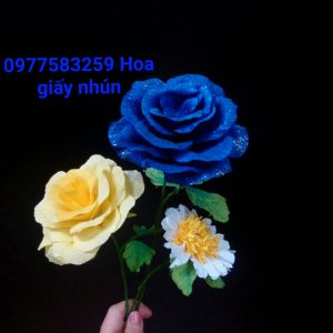 22339575_983780581787210_6986723003648618575_o