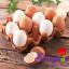 Cách chọn mua trứng