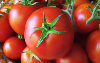 mẹo vặt gia đình, chế biến cà chua bảo quản được lâu