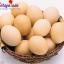 Các mẹo vặt hay với trứng, chế biến các món ăn từ trứng