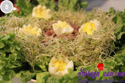 Salad rau mầm tươi 5