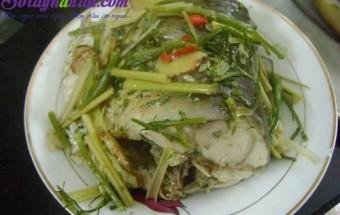Nấu ăn món ngon mỗi ngày với Cá, Món cá hấp bia ngon tuyệt vời ông mặt trời