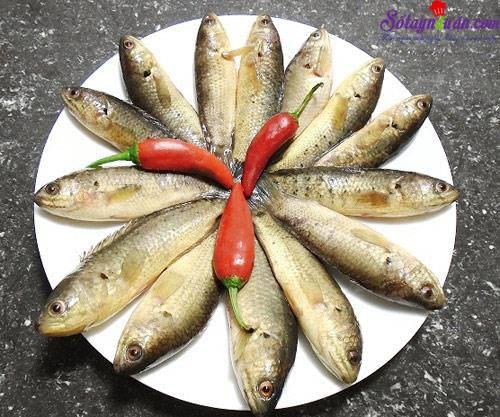 Bí quyết làm bún cá rô đồng thơm ngon đúng vị 1