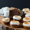 bánh quy sữa, Bánh cupcake Some More cho những chuyến picnic kết quả
