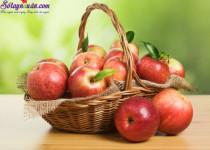Thực phẩm tốt cho người bị máu nhiễm mỡ