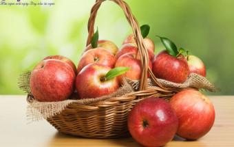 , thực phẩm tốt cho người máu nhiễm mỡ 3