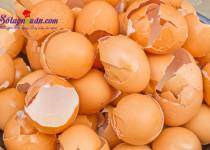 Đừng bỏ vỏ trứng bởi tác dụng thần kỳ của nó