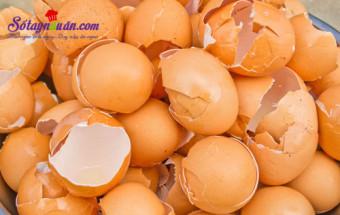 mẹo vặt, Đừng bỏ vỏ trứng bởi tác dụng thần kỳ của nó 1