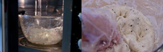 cách làm bánh hotteok hàn quốc 3